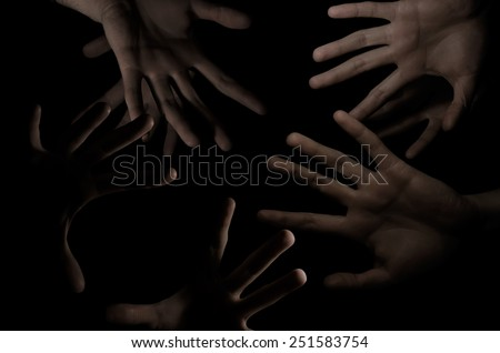 palms in the dark - stock photo