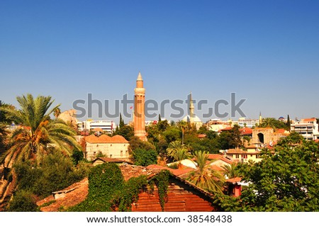Palms, old town, high temperature. - stock photo