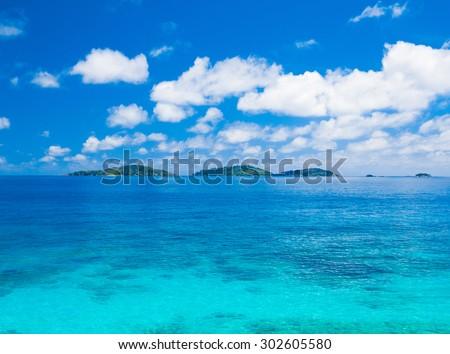 Palms Shore Jungle  - stock photo