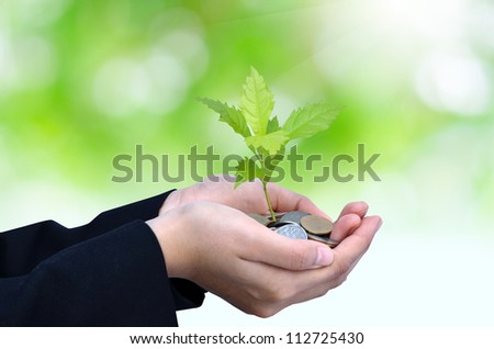 Palms with a young tree growing from pile of money coins with green background as business success concept - stock photo