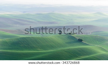 Palouse rolling hills in sunrise, view from Stepteo Butte State Park. The low light and low rolling hills in different colors and shade are unique beauty of this Eastern Washington. Natural background - stock photo