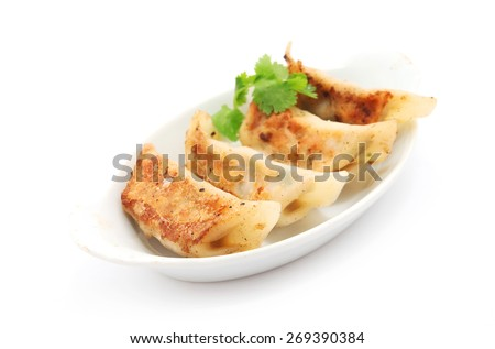 Pan Fried Dumpling isolated on white - stock photo