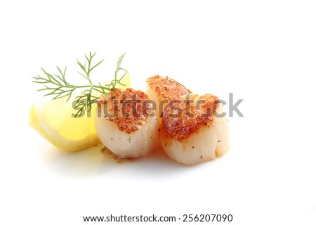Pan seared scallops with dill and lemon isolated over a white background. - stock photo
