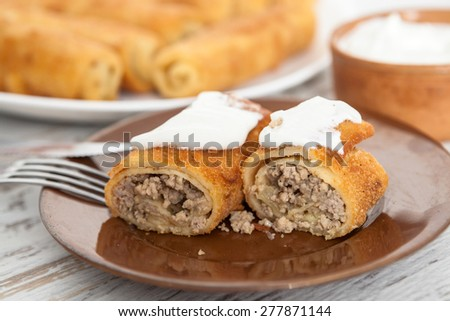 Pancakes Stuffed With Meat - stock photo