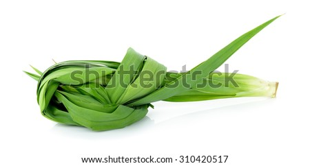 Pandan leaf isolated on the white background .