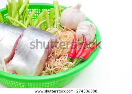 Pangasius or Vietnamese catfish in the kitchen in a white background - stock photo