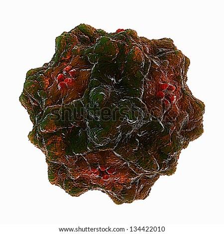 Panleukopenia Virus - stock photo