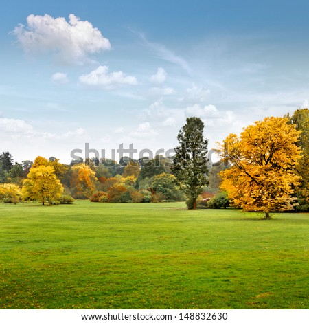 Panorama. Beautiful autumn trees. Autumn landscape. - stock photo