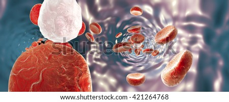 Panorama 360 degree view inside blood vessel with red blood cells and white blood cells. 3D illustration - stock photo