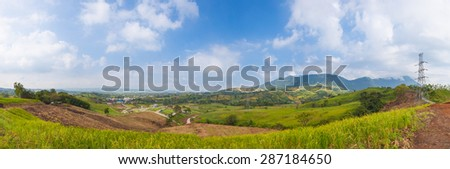 panorama forest destruction.Forest destruction. The condition of forests on the mountains destroyed nature. - stock photo