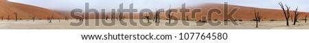 Panorama from ten photos of Deadvlei near Sossusvlei,  Namibia - stock photo