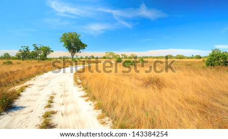 Panorama Landscape of Savannah field in Southern of Thailand near Phuket - stock photo