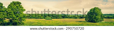 Panorama landscape with green grass and trees - stock photo