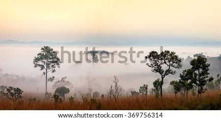 Panorama misty morning sunrise at Thung Salang Luang National Park Phetchabun,Thailand - stock photo