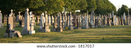 Panorama of a cemetery
