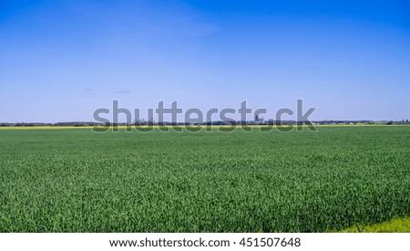 Panorama of a grain field in Saskatchewan - stock photo