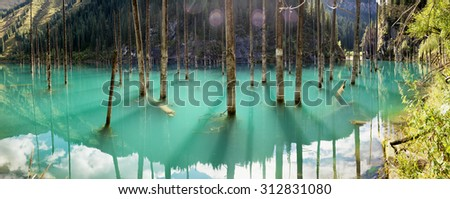 Panorama of dead trees in Lake Kaindy, Tien-Shan mountains, Kazakhstan - stock photo