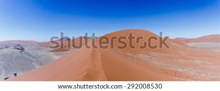 panorama of Dune 45 in sossusvlei Namibia, view from the top of a dune, best place in namibia - stock photo