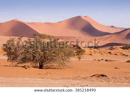 Panorama of Dunes in Namib Desert , Namibia - stock photo