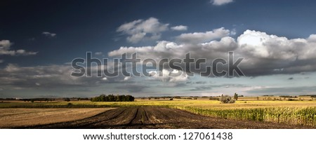 Panorama of field with cloudscape - stock photo