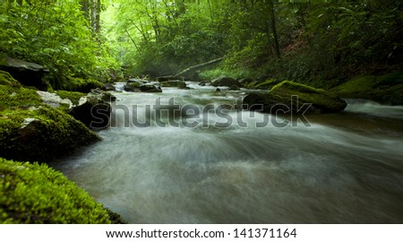 panorama of flowing river in forest - stock photo