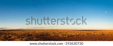 Panorama of Gibber and Mitchell Grass plains in the evening light. Sturt Desert, outback New South Wales, Australia. After good summer rains in early 2010 - stock photo