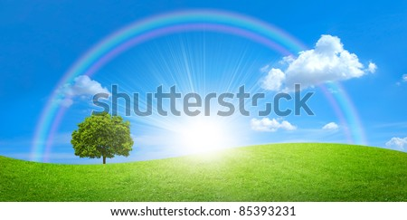 panorama of green field with a big tree and rainbow in blue sky - stock photo