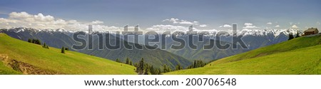 Panorama of Hurricane Ridge mountain landscape, meadow, Olympic National Park - stock photo