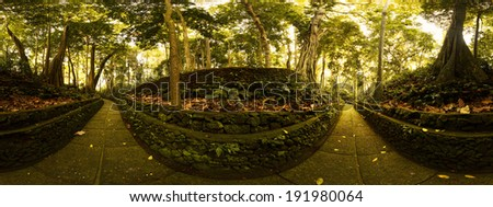 Panorama of Monkey Forest sanctuary in the city of Ubud. Bali, Indonesia - stock photo