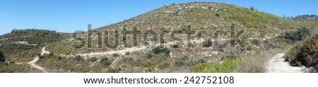 Panorama of mount Carmel in Israel                                - stock photo