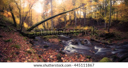 Panorama of river in autumn colors forest. Great Smoky Mountains National Park, USA