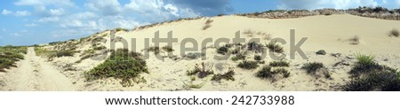 Panorama of sand dunes on the beach near Caesarea, Israel                                - stock photo