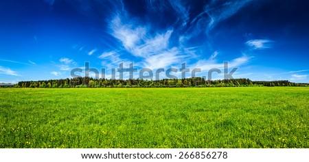Panorama of summer meadow pastoral idyllic serene scene. Bavaria, Germany - stock photo