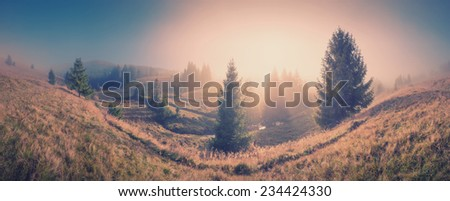 Panorama of sunrise in a Carpathian misty valley covered with magic pink fog. Vintage colors - stock photo