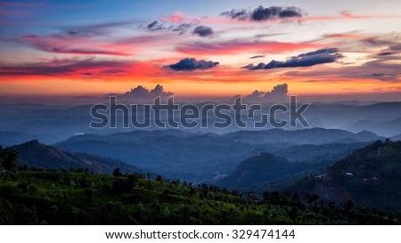 Panorama of sunset in mountains with tea plantations. Munnar, Kerala, India - stock photo