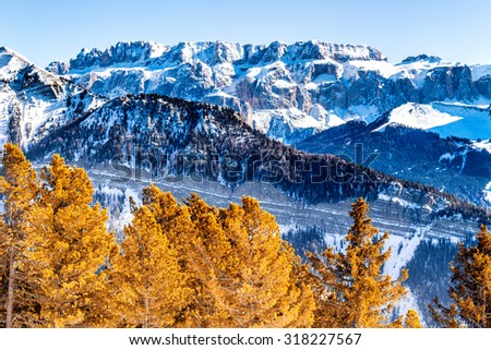 panorama of the Dolomites with snow-capped peaks and conifers