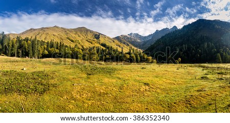 Panorama of the foggy summer morning in the mountains - stock photo