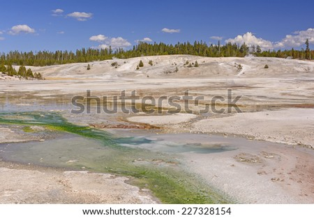 Panorama of the Norris Geyser Basin in Yellowstone National Park in Wyoming - stock photo