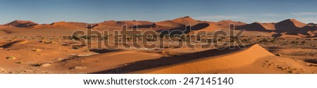 Panorama of the Sossusvlei dune field in the morning light, Namibia, Africa - stock photo