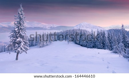 Panorama of the winter sunrise; in the mountains - stock photo