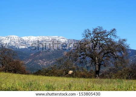 panorama of Topa Topa Mountains in Ojai  - stock photo