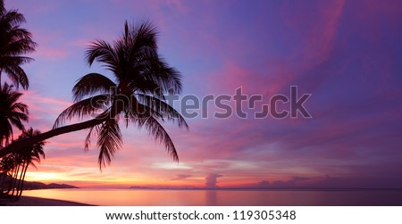 Panorama of tropical sunset with palm tree silhouette at beach - stock photo
