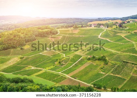 Panorama of vineyards in France. - stock photo