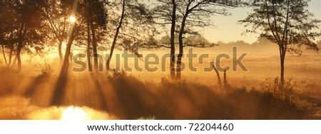 Panorama rays of the rising sun - stock photo