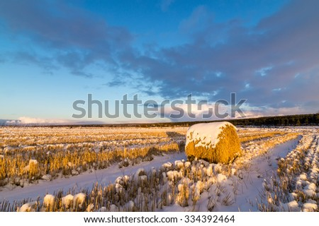 panorama rural field with haystack and the first snow in Russia, Ural - stock photo