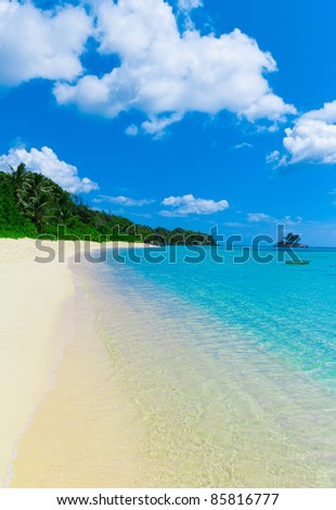 Panorama Tranquility Jungle - stock photo