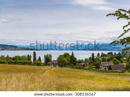 Panorama view of Zurich lake and the alps on the hill of the peninsula Au, located in the lake Zurich at the municipality Au between Wadenswil and Horgen in the Canton of Zurich, Switzerland.