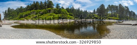 panorama view,scenic view in Ruby beach on summer.Washington,Usa. - stock photo