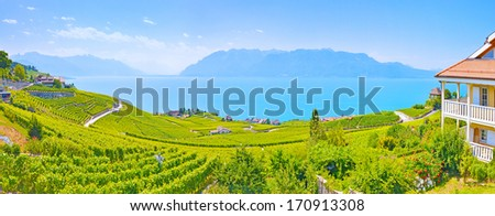 Panorama vineyards in Lavaux region against leman lake  - stock photo