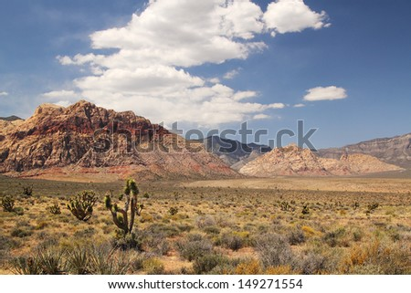 Panorama with joshua tree at red rock canyon in Nevada - stock photo